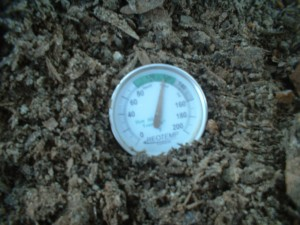 Greenhorn Gardening Compost