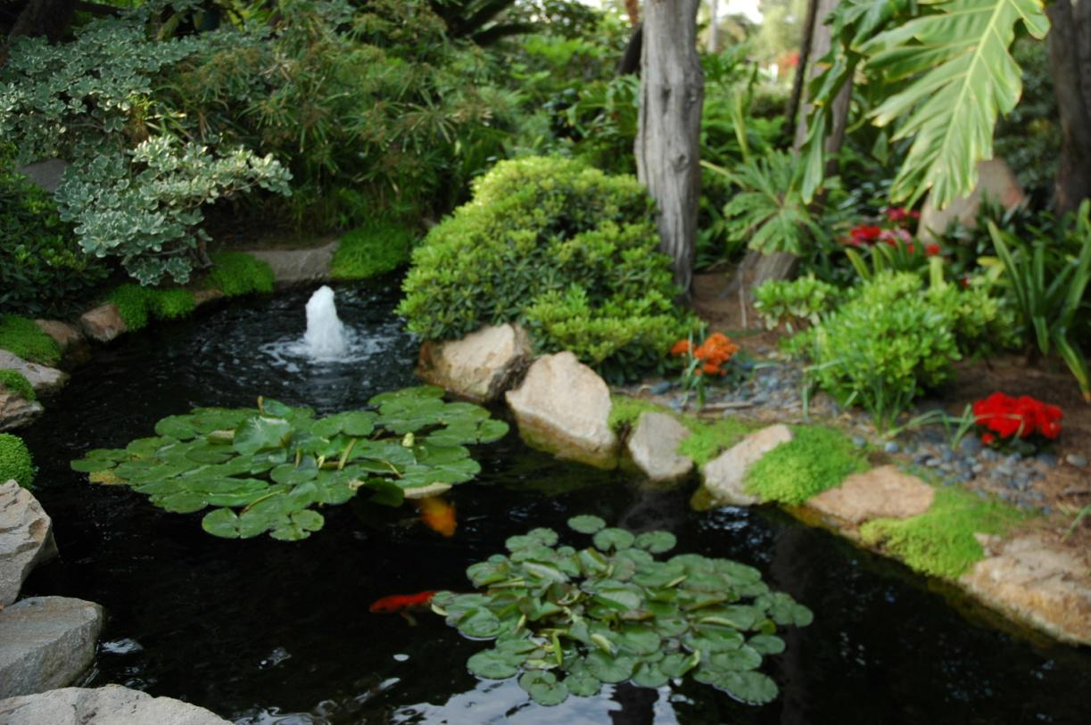 How to design plan and build your own garden pond for Simple koi pond
